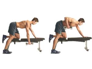 entrainement-musculation-haltere