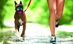 courrir-avec-son-chien